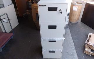 Sentry 4B2100 Fire File